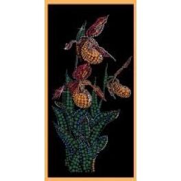 Картина Swarovski/Сваровски «Венерины башмачки»