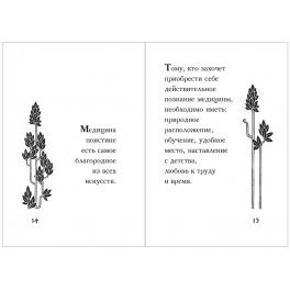 Подарочная миниатюрная книга Гиппократ «Мысли великого врача» в кожаном переплете
