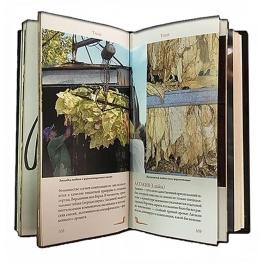 Книга в кожаном переплете «Трубки»