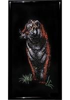 Картина «Бенгальский тигр»