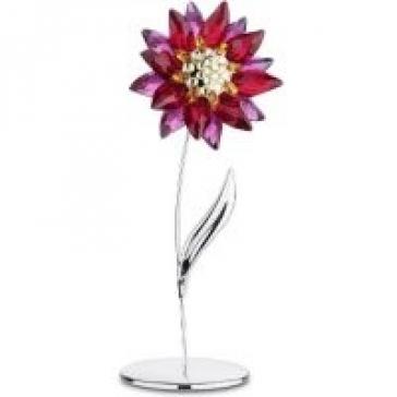 Цветок Domoni, Light Siam