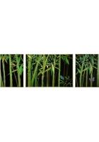 Хрустальное панно «Бамбук»