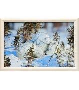 Картина «Белые медведи»