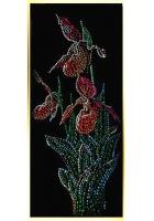 Картина «Венерины башмачки»